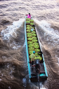 Green mangoes transported to Cho Noi market deep in the Mekong Delta